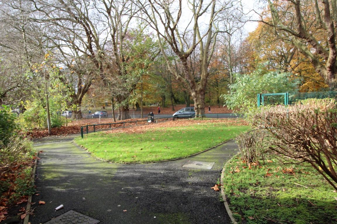 Views Of Sefton Park